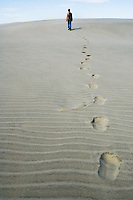 footprints of single person walking on sand dunes of Farewell Spit, New  Zealand
