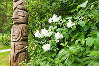 Totem Pole adjacent to blossoming flowers in Juneau, Alaska
