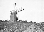 North East PA: View of a Windmill on a farm near North East Pennsylvania.  It's obvious that the windmill has seen better days/