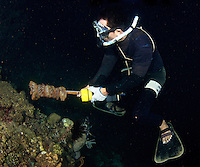Even while free diving, the local fisherman proved to be the most efficient way of tackling the crown of thorn problem. Some nights they would catch over 1000 specimens between just 4 of them.
