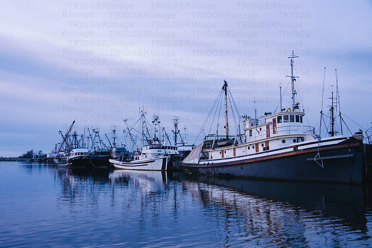 Fishing boats in a harbour