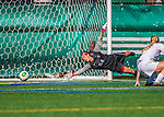 29 September 2013: Stony Brook University Seawolves Goalkeeper Ashley Castanio, a Redshirt Junior from Oceanside, NY, is unable to stop Vermont's goal by University of Vermont Catamount Forward Bre Pletnick (not pictured), at Virtue Field in Burlington, Vermont. The Lady Seawolves defeated the Catamounts 2-1 in America East play. Mandatory Credit: Ed Wolfstein Photo *** RAW (NEF) Image File Available ***