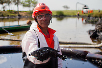 A worker holds a fish covered in oil found in the Coatzacoalcos river, in the state of Veracruz on January 7, 2012.  Greenpeace traveled in the zone affected by the oil spill in El Polvor&iacute;n, in Cosoleacaque, Veracruz, that has contaminated at least 12 km of the Coatzacoalcos River. Local fishermen contracted to clean the disaster have not been paid for these activities and work under risk conditions for their health, breathing the hydrocarbon steam during more than twelve hours daily.(Photo: Greenpeace / Prometeo Lucero)