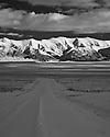 Desert Nevada Scenics Lonely Road B&W