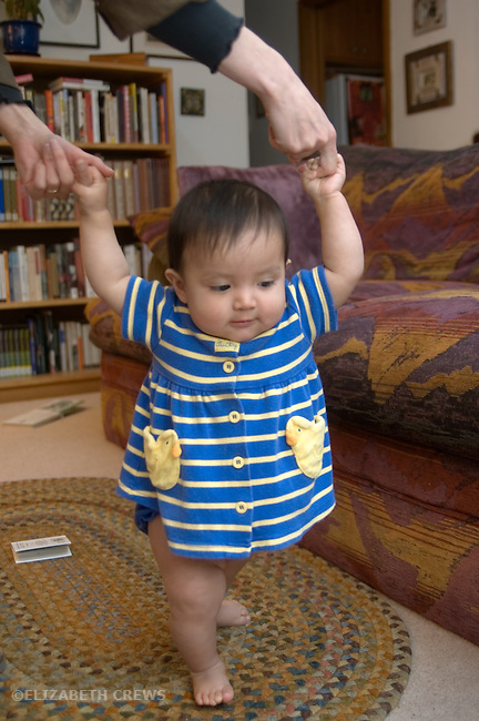 Berkeley CA Guatemlan baby girl, eleven-months-olds, practicing walking while holding on to mother's hands  MR