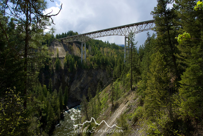Idaho, Bonners Ferry, Moyie Springs. The Moyie River Bridge on hwy 2 east of Bonners Ferry crosses the Moyie river canyon. Constructed in 1965  it is 1,223 feet long and 424 feet high. The second tallest bridge in Idaho.