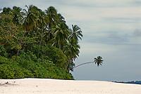 Pulau Saumang, Mentawai Islands, Indonesia