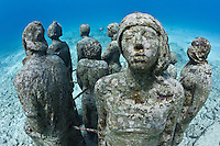 RG40566-D. underwater sculpture garden called The Silent Evolution, made by artist Jason de Caires Taylor. Part of the Museo Subacuatico de Arte, these cement sculptures rest in 25 feet of water off Isla Mujeres and depict real people, including many locals from the Cancun area. Made using special materials which encourage colonization by coral and other marine life. One goal of this installation is to help form an artificial reef which will reduce tourist pressure on nearby natural reefs. Mexico, Gulf of Mexico, Caribbean Sea.<br /> Photo Copyright &copy; Brandon Cole. All rights reserved worldwide.  www.brandoncole.com