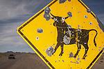 Shot-up Open Range cattle traffic hazard sign, Nye Co., Nev.