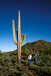 Arizona: Tucson.  Couple at Saguaro Natl Park. Model Rel.  Photo #:  aztucs101.   .Photo copyright Lee Foster, 510/549-2202,  lee@fostertravel.com, www.fostertravel.com