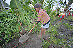 Virginia Baclean digs a ditch for a water pipe as part of a cash for work program in the village of Cambayan in the Philippines province of Samar. The region was hit hard by Typhoon Haiyan in November 2013. Known locally as Yolanda, the storm left much of the community's infrastructure a shambles. Norwegian Church Aid, a member of the ACT Alliance, is helping the community rehabilitate its potable water system as well as build new toilets.