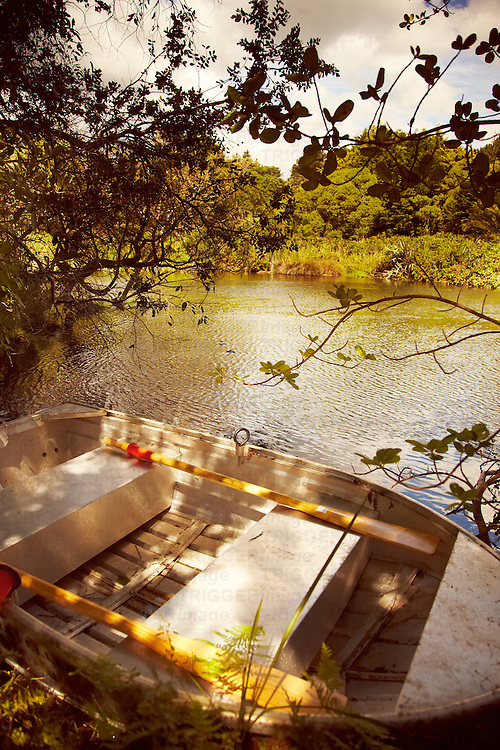 A steel dingy on a lakeside under trees in summer