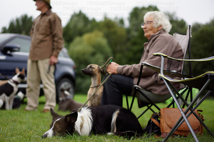 Elderly lady sitting with her collie dog at a dog show