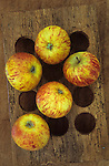 Vintage egg rack with five red and yellow striped Cox apples