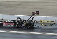 Nov 12, 2016; Pomona, CA, USA; NHRA top fuel driver Steve Torrence during qualifying for the Auto Club Finals at Auto Club Raceway at Pomona. Mandatory Credit: Mark J. Rebilas-USA TODAY Sports