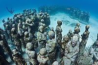 RG40508-D. underwater sculpture garden called The Silent Evolution, made by artist Jason de Caires Taylor. Part of the Museo Subacuatico de Arte, these cement sculptures rest in 25 feet of water off Isla Mujeres and depict real people, including many locals from the Cancun area. Made using special materials which encourage colonization by coral and other invertebrate marine life, and also attract tropical fish species. One goal of this installation is to help form an artificial reef which will reduce tourist pressure on nearby natural reefs.  Mexico, Gulf of Mexico, Caribbean Sea.<br /> Photo Copyright &copy; Brandon Cole. All rights reserved worldwide.  www.brandoncole.com