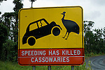 Conservation road sign regarding cassowaries