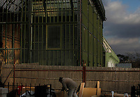 New Caledonia Glasshouse (formerly The Mexican Hothouse) built in the 1830s by Charles Rohault de Fleury, Jardin des Plantes, Museum National d'Histoire Naturelle, Paris, France. General view of renovation works with a carpenter in the foreground. In the background are the Tropical Rainforest Glasshouse (formerly Le Jardin d'Hiver or Winter Gardens), 1936, René Berger, and the adjacent Desert and Arid Lands Glasshouse. The New Caledonia Glasshouse, or Hothouse, was the first French glass and iron building.
