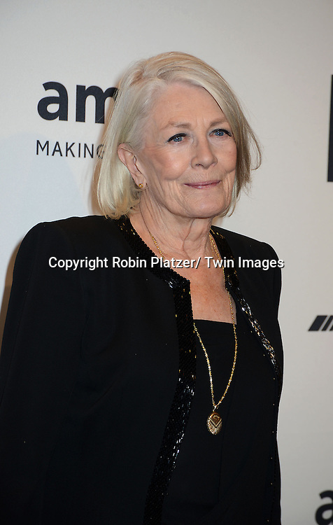 Vanessa Redgrave attends the amfAR New York Gala on February 5, 2014 at Cipriani Wall Street in New York City.