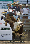 Jake Wade, from Almono, N.M. is bucked off Little Johnny during the Xtreme Bull Riding Competition at the Kitsap County Fair and Stampede  held Aug. 26 to Aug. 30, 2009 in Silverdale, WA. Jim Bryant Photo. © 2009WA. All Right Reserved. © 2009