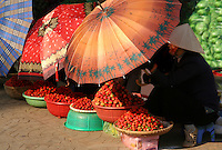 Strawberries at Dalat Market -  Dalat is known for its fresh flowers and produce, especially cauliflower, artichokes and strawberries.