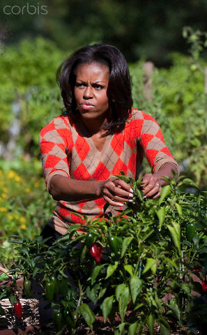 05 Oct 2011, Washington, DC, USA --- First lady Michelle Obama attends  the third annual White House kitchen garden fall harvest.    The garden is part of the first lady's better health and Let's Move initiatives. --- Image by © Brooks Kraft/Corbis