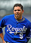 14 September 2008: Kansas City Royals' outfielder David DeJesus returns to the dugout during a game against the Cleveland Indians at Progressive Field in Cleveland, Ohio. The Royal defeated the Indians 13-3 to take the 4-game series three games to one...Mandatory Photo Credit: Ed Wolfstein Photo
