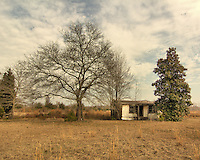 This small abandoned home is located on Rt. 52 just South of Monks Corner and on the other side of the railroad tracks. The few acres around the house appear to have been used for farming and I suspect this home was used by the owner/family or perhaps a sharecropper.