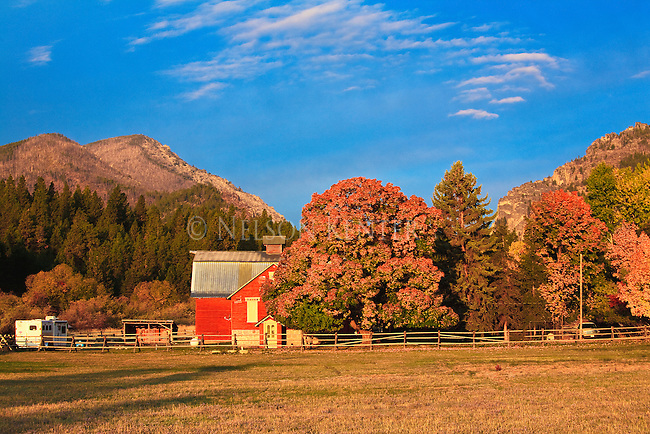 Red barn and fall color in the Bitterroot Valley, western Montana