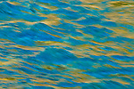 Ponderosa Abstract 2 - American River, Weimar, California.