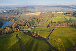 Alexana Vineyards, Dundee Hills, Willamette Valley, Oregon