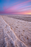 Pink pastel sunrise along the freezing shores of Barter Island, Beaufort Sea, arctic, Alaska.
