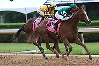 HOT SPRINGS, AR - April 14: Stellar Wind #3 with jockey Victor Espinoza aboard overtakes Terra Promessa #1 to win the Apple Blossom Handicap at Oaklawn Park on April 14, 2017 in Hot Springs, AR. (Photo by Ciara Bowen/Eclipse Sportswire/Getty Images)