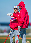 25 February 2016: Washington Nationals First Base Coach Davey Lopes (left) chats with Manager Dusty Baker during the first full squad Spring Training workout at Space Coast Stadium in Viera, Florida. Mandatory Credit: Ed Wolfstein Photo *** RAW (NEF) Image File Available ***