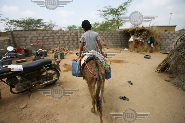 Mohammed, the son of Dr. Hassan Salem, goes to collect water on a donkey in Mahali Arabia.