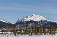 Trans Alaska oil pipeline and Mt. Sukakpak, Brooks range, Alaska.