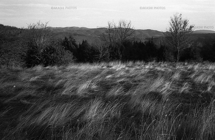 November 2007.Navarra, Spain.©Toru Morimoto