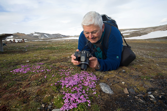 Bill tries a close up with his digital camera on Moss Campion at Camp Mansfield. Blomstrand. Svalbard.