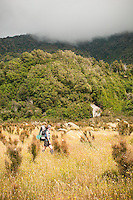 Female tramper hikes through grassy clearing on side of Whataroa River, South Westland, West Coast, New Zealand