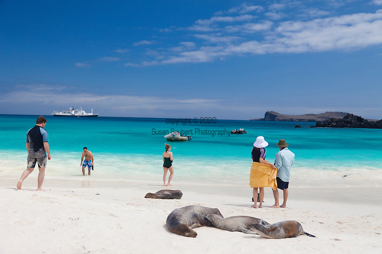 a sandy beach on the island of Espanola in the Galapgos National Park, in Ecuador, South America