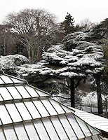 New Caledonia Glasshouse (formerly The Mexican Hothouse), 1830s, Charles Rohault de Fleury, Jardin des Plantes, Museum National d'Histoire Naturelle, Paris, France. High angle view of rooftop covered in snow, with the trees of the Jardin des Plantes, also snow covered, in the background. The New Caledonia Glasshouse, or Hothouse, was the first French glass and iron building.