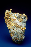 NATURAL GOLD IN QUARTZ MATRIX<br /> Au Specimen<br /> Elemental gold is usually found either in placer (alluvial) deposits or veins such as in this white quartz matrix.