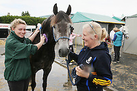 6/8/2010. Emily and Anne King from Wexford are pictured washing their horse Duke Of Wellington at the Failte Ireland RDS House Show. Picture James Horan/Collins