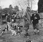 The Dummer Beagles.A lawn meet at Manor Farm, Icomb, Gloucestershire. Its a very social occasion with the host providing ample refreshment..Hunting with Hounds / Mansion Editions (isbn 0-9542233-1-4) copyright Homer Sykes. +44 (0) 20-8542-7083. &lt; www.mansioneditions.com &gt;..