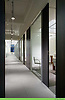 Armani Exchange Offices by Gary Lee Partners