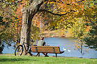 November 1, 2016; A student studies on a bench in front of St. Mary's Lake.  (Photo by Barbara Johnston/University of Notre Dame)