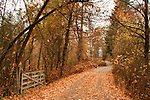 An open gate and leaf strewn road into the autumn landscape. Coeur D Alene, Idaho, USA