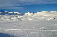 Skiing by the Skarvene mountains. Utrolige forhold for skiturister i Skarvan og Roltdalen nasjonalpark (opprettet 2004) i Selbu. I bakgrunnen fjellkjeden Skarvan med fjelltoppen Storskarven i midten. Kvernfjellvatnet foran. Skarvan.