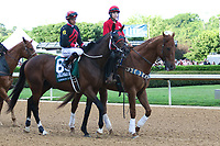 HOT SPRINGS, AR - April 15: Looking at Lee #6 and jockey Luis Contreras in the post parade prior to the Arkansas Derby at Oaklawn Park on April 15, 2017 in Hot Springs, AR. (Photo by Ciara Bowen/Eclipse Sportswire/Getty Images)