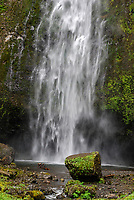 Multnomah Falls, Columbia River Gorge, Oregon, USA, 200809010821..Copyright Image from Victor Patterson, 54 Dorchester Park, Belfast, N Ireland, BT9 6RJ..Tel: +44 28 9066 1296.Mob: +44 7802 353836.Email: victorpatterson@mac.com..IMPORTANT: Please go to www.victorpatterson.com and click on my Terms and Conditions of use.